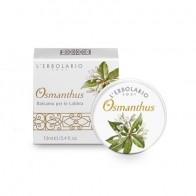 Osmanthus - Lip balm - limited edition - 13 ml